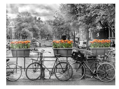 Typical Amsterdam - Panoramic View Stampa artistica