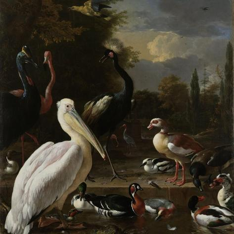 A Pelican and Other Birds Near a Pool, known as the Floating Feather Premium Giclee Print