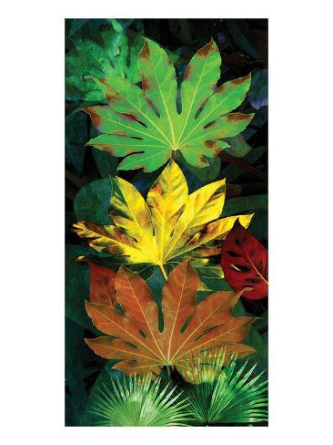 Tropical Fatsia Art Print