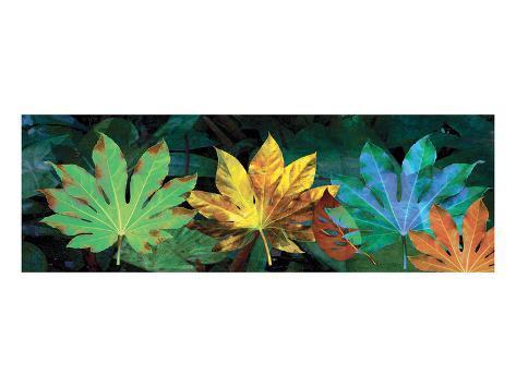 Tropical Triptych Fatsia Art Print
