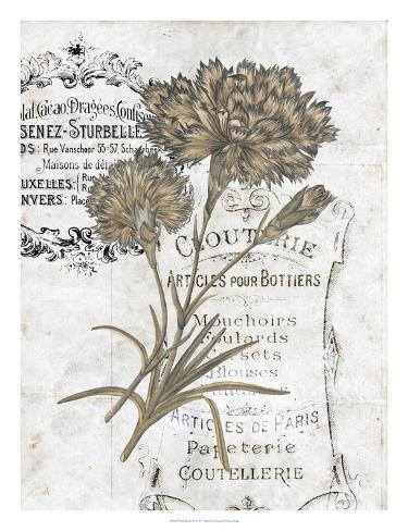 Petite Beaute III Giclee Print