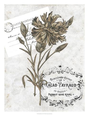 Petite Beaute IV Giclee Print