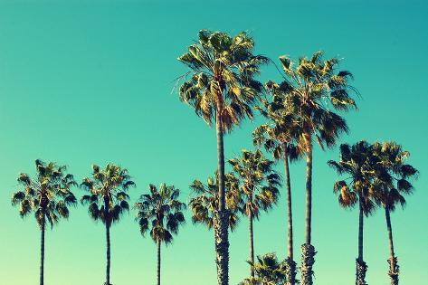 Palm Trees at Santa Monica Beach. Vintage Post Processed. Fashion, Travel, Summer, Vacation and Tro Stampa fotografica