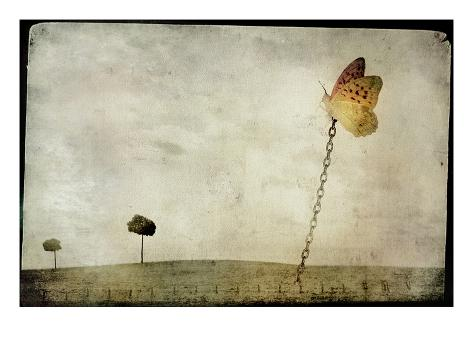 Oversized Butterfly Chained to Ground Photographic Print
