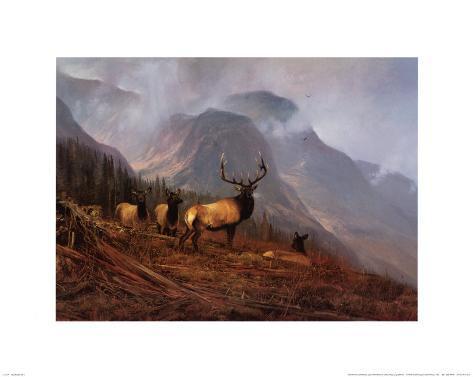 Bookcliffs Elk I Art Print
