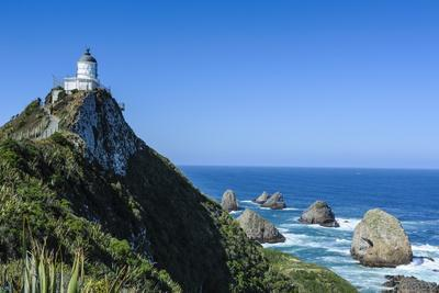 Nugget Point Lighthouse The Catlins South Island New