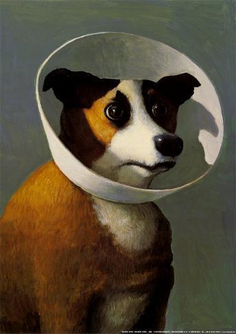 Filmhound Art Print