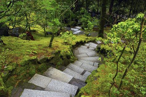 steps wild garden portland japanese garden portland oregon usa photographic print by michel hersen at allposterscom - Wild Garden