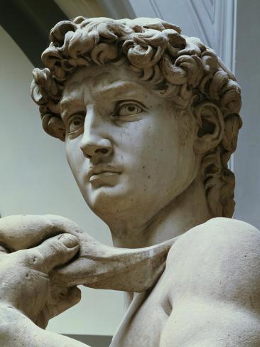 david detail of the head 1504 stampa gicl e di