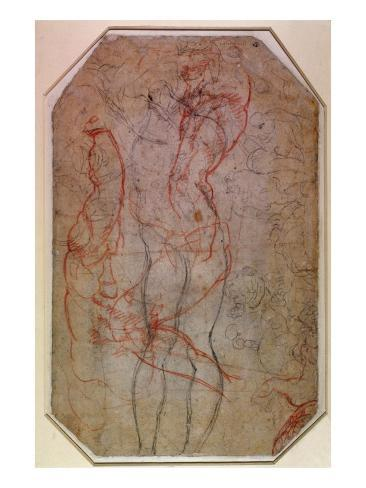 Study of Figures and the Creation of Adam Giclee Print