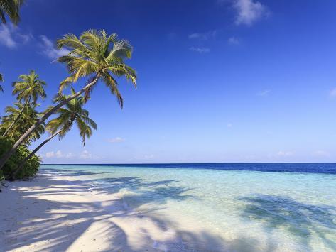 Maldives, Faafu Atoll, Filitheyo Island Photographic Print