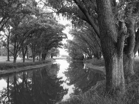 Shaded River in the Pampa Region, Argentina Photographic Print