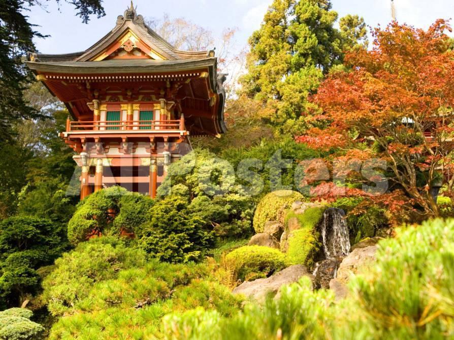 japanese tea garden golden gate park san francisco california usa photographic print by michele westmorland at allposterscom - Golden Gate Park Japanese Tea Garden