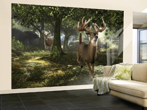 Big Buck Whitetail Deer Wall Mural Large by Mike Colesworthy