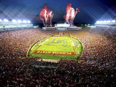 Florida State University - Florida State Football Photo