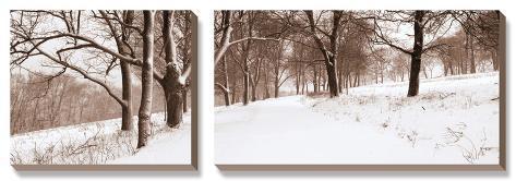 First Snow I Canvas Art Set