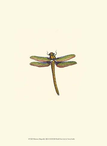 Miniature Dragonfly I Art Print