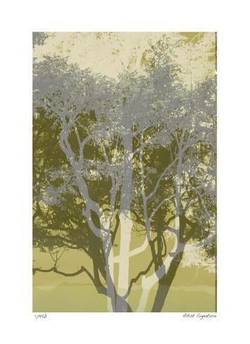 Views of Trees 3 Giclee Print
