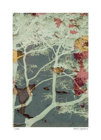 Weathered Trees in Blue 2 Giclee Print
