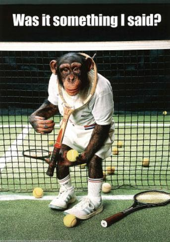 Monkey Tennis Was it Something I Said Humor Poster Print Mini Poster