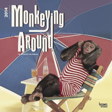 Monkeying Around - 2014 Calendar Calendars