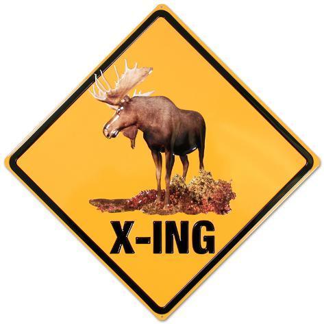 Moose Crossing Tin Sign