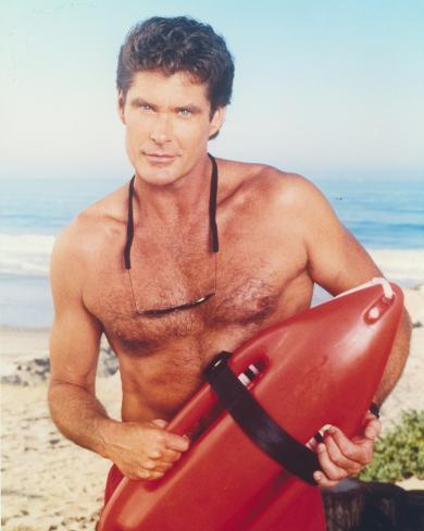 Image result for david hasselhoff
