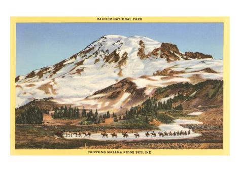 Mt. Rainier, Mazama Ridge, Washington Art Print