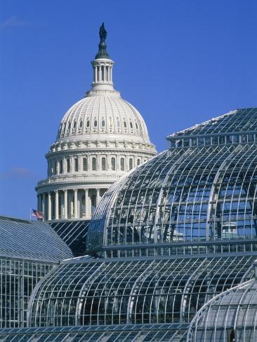 United States Botanic Garden Conservatory and Capitol, Washington DC, USA Photographic Print