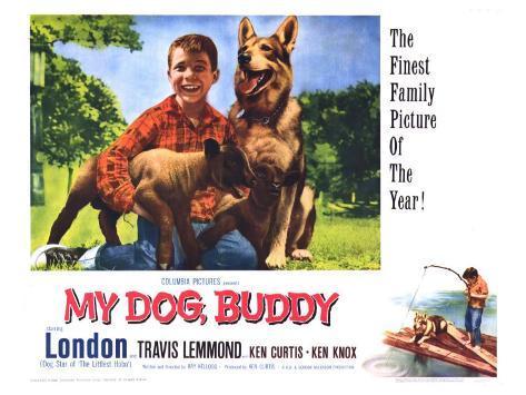 My Dog Buddy, 1960 Stretched Canvas Print
