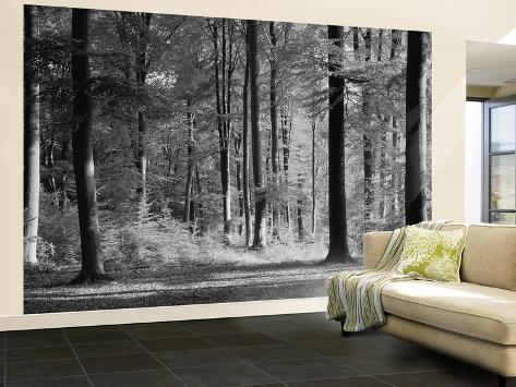 ... Print Wall Mural Mystical Forest Wall Mural Poster Print Wall Mural At  ... Part 94