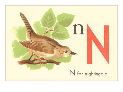 N is for Nightingale Art Print