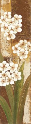 Tropical Blossom I Framed Art Print