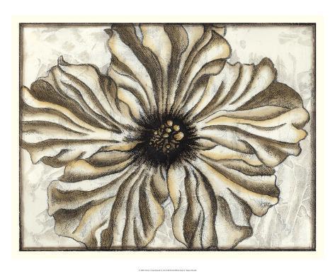 Fresco Flowerhead I Giclee Print