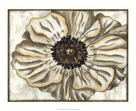 Fresco Flowerhead II Giclee Print