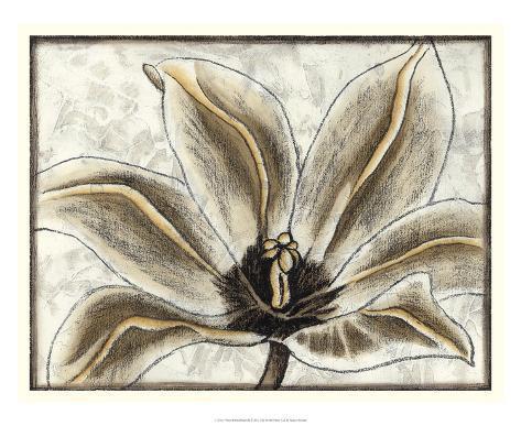 Fresco Flowerhead III Giclee Print