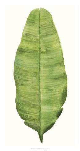 Tropical Breeze Leaves IV Giclee Print