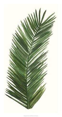 Tropical Breeze Leaves V Giclee Print