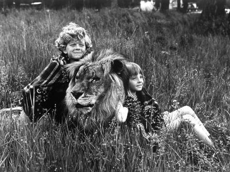 Napoleon and Samantha Avec Johnny Whitaker Et Jodie Foster 1972 Photo