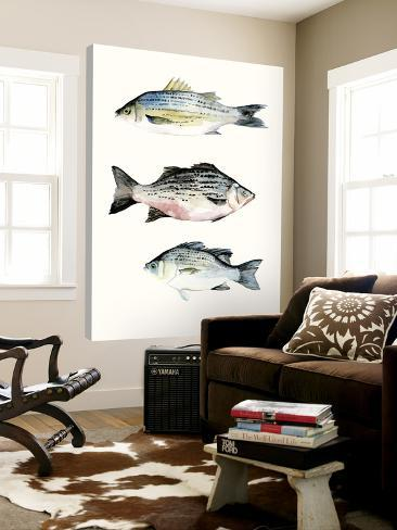Fish Grouping 2 Loft Art