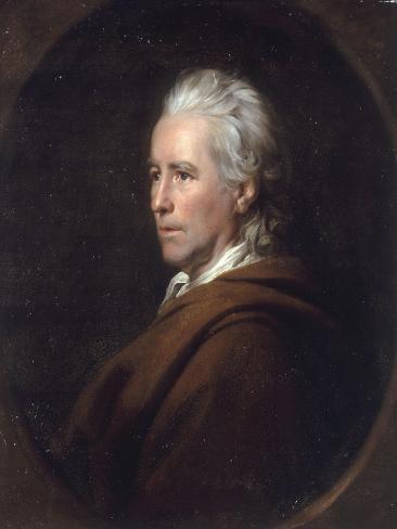 Portrait of Anthony Morris Storer, 1770 Lámina giclée