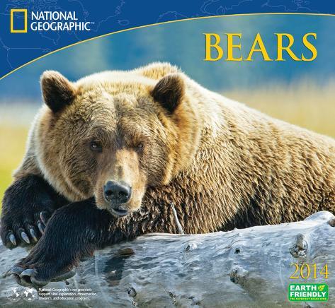 National Geographic Bears - 2014 Deluxe Calendar Calendars