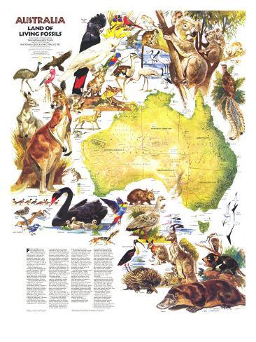 1979 Australia, Land of Living Fossils Map Art Print