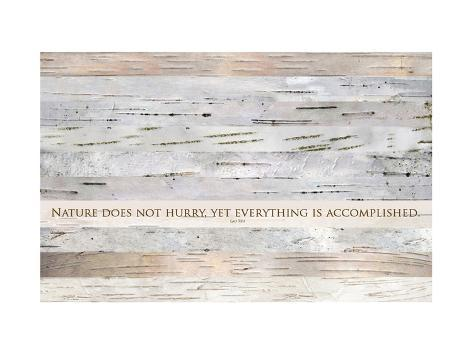 Nature does not hurry (after Lao Tsu) Premium Giclee Print