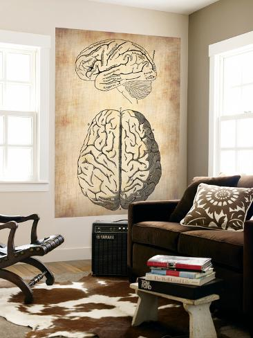 Vintage Brain Anatomy Wall Mural