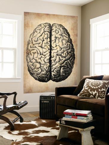 Vintage Brain Wall Mural