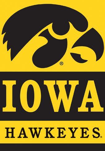 NCAA Iowa Hawkeyes 2-Sided House Banner Flag