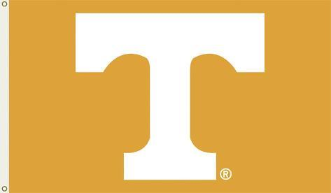 NCAA Tennessee Volunteers Flag with Grommets Flag
