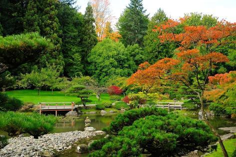 Assorted Colors of the Japanese Garden Photographic Print