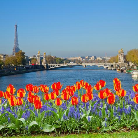 Bridge of Alexandre Iii, Paris Photographic Print